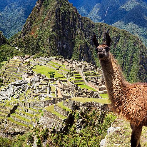 Au coeur de l'Altiplano en groupe - Lima -
