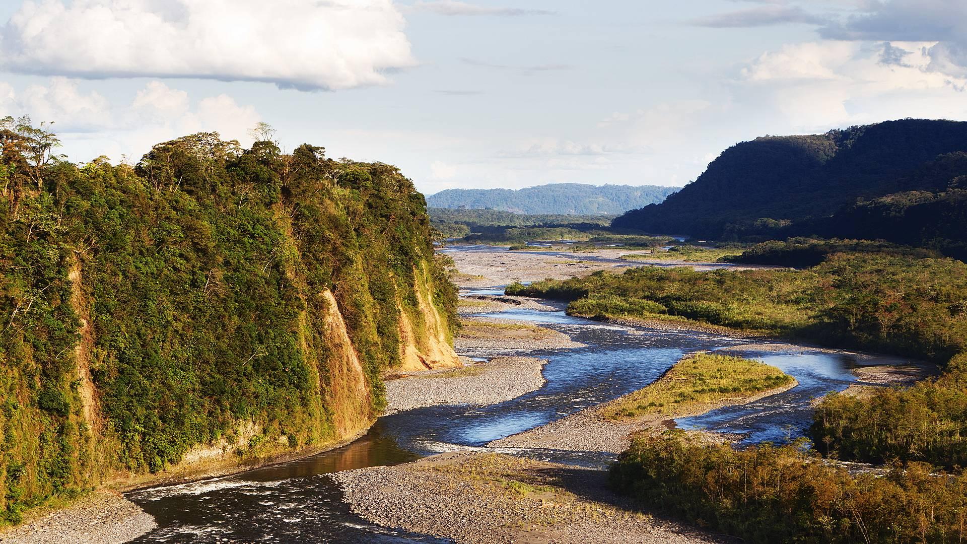 Voyage naturaliste complet: Cordillère, Rivière Napo et Parc National Yasuni