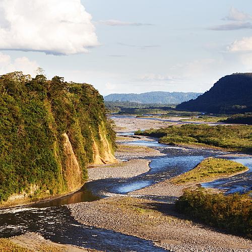 Voyage naturaliste complet: Cordillère, Rivière Napo et Parc National Yasuni - Quito -