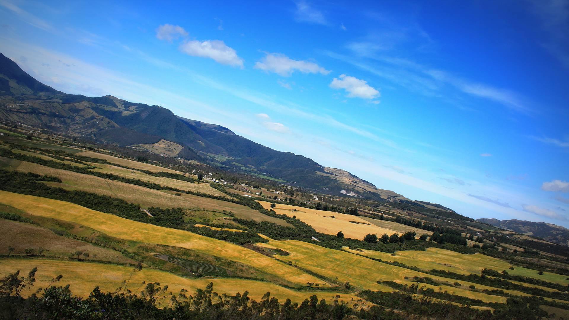 Quito, Amazonie et Sierra en maison d'hôtes
