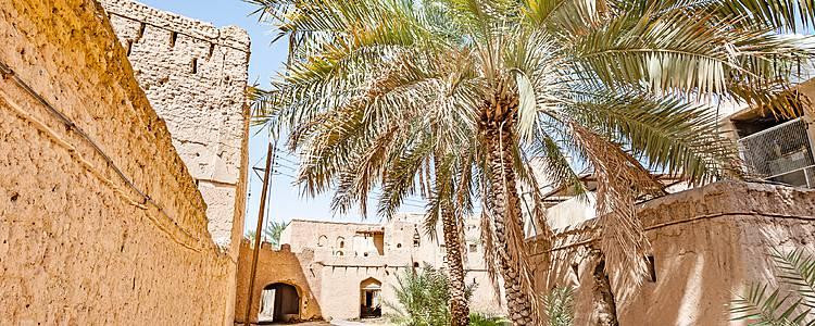Entdeckung der Weihrauchregion Dhofar