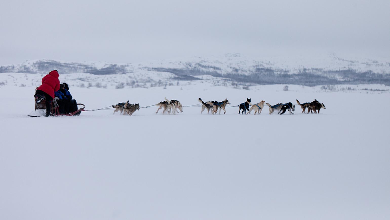 Image Aurores boréales et Laponie suédoise