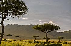 Safari d\'exception en avion et camps de luxe