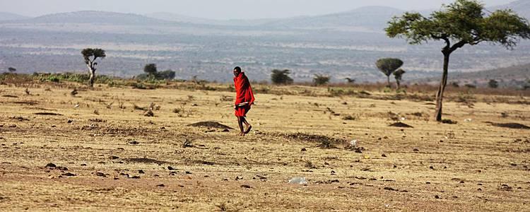 Des plaines du Masai Mara aux plages de l'Océan Indien