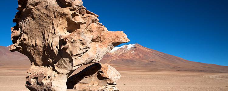 Combiné Chili - Bolivie: Le meilleur de l'Altiplano