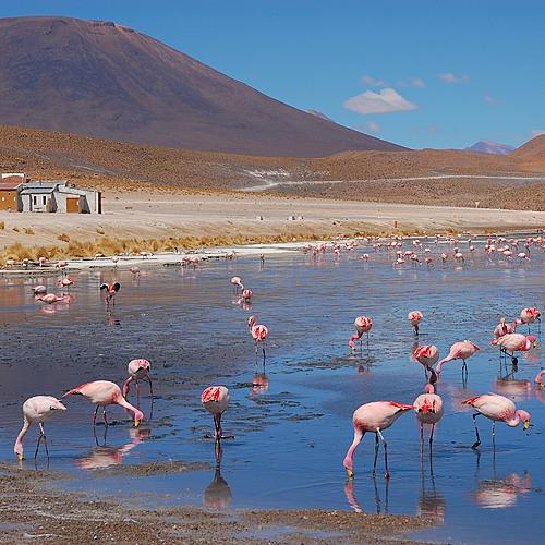 Entre Ciel et Terre: Titicaca, Lipez, Salar et Potosi - La Paz -