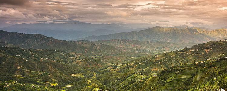 Du Rajasthan au parc de Chitwan, entre vie sacrée et vie sauvage