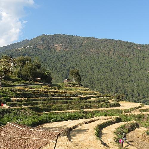 Bhoutan Express - Katmandou -