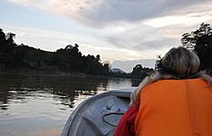 Bornéo, du fleuve Kinabatangan à Kota Kinabalu