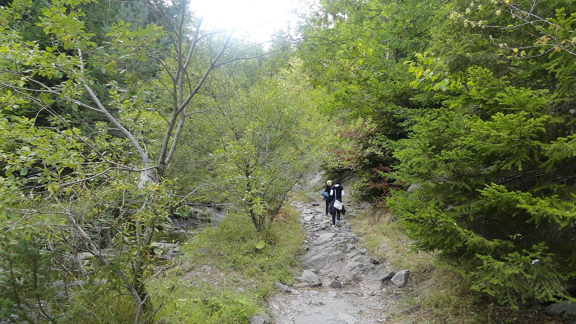 Randonnée dans les Rhodopes, de la Bulgarie à la Grèce
