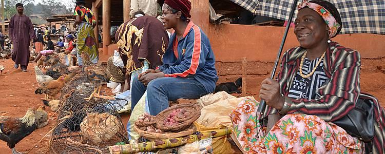 Cameroun éco-solidaire