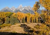 Le Parc national Grand Teton