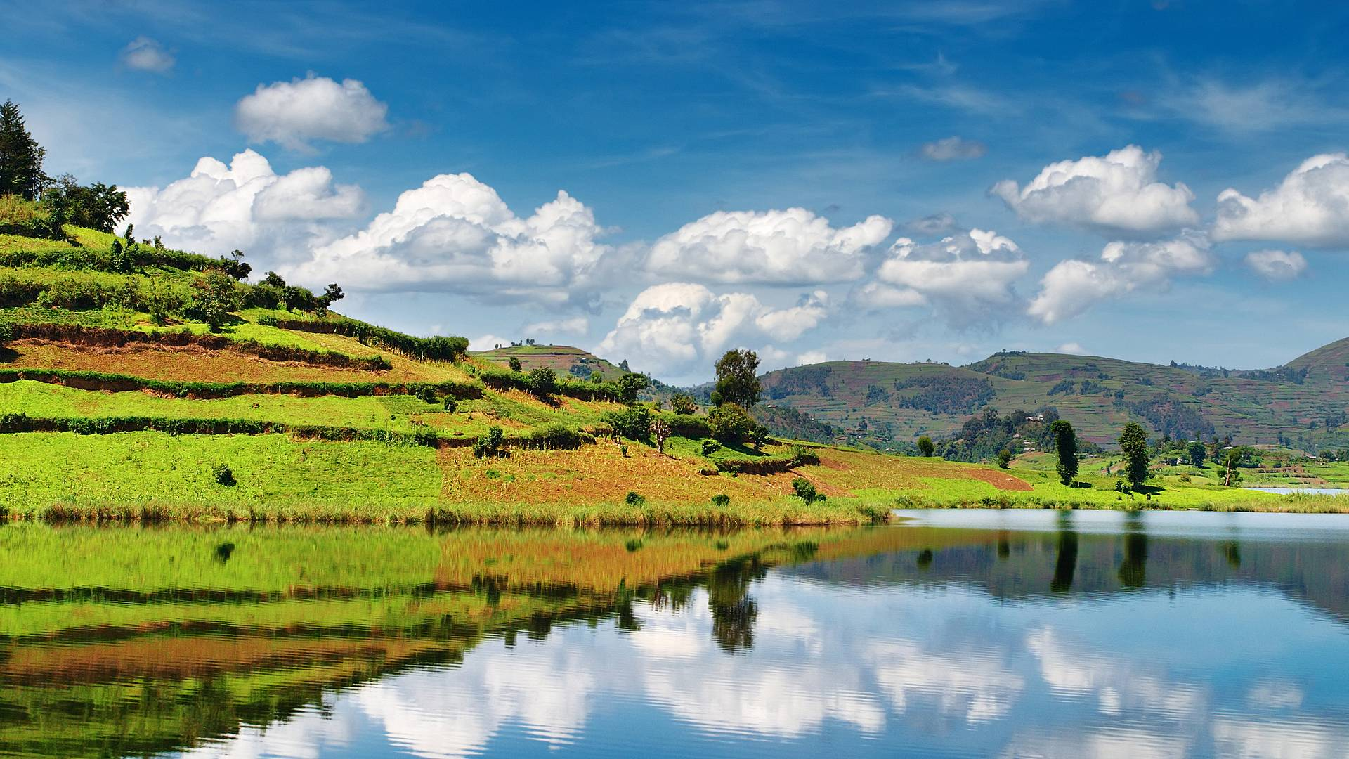 Trekking de primates y Lago Bunyonyi