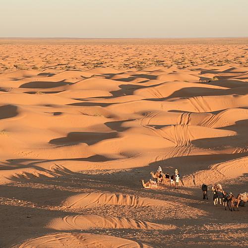 Grande escapade dans le Sud tunisien - Djerba -