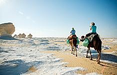 Caire, Oasis de Baharia et randonnée au Désert Blanc