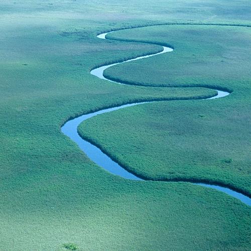 Entre ciel et terre - Delta de l'Okavango -