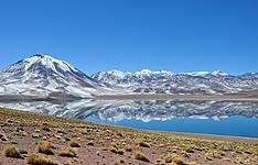 Exploration du désert d\'Atacama et du Parc National Lauca