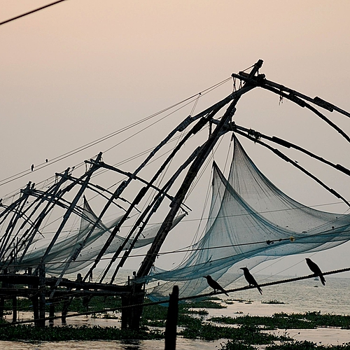 Le Kerala en famille - Kochi -