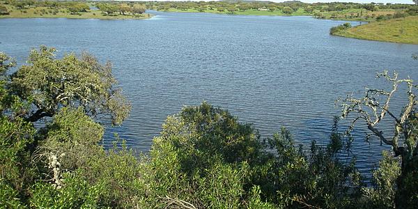 Le lac d'Alqueva
