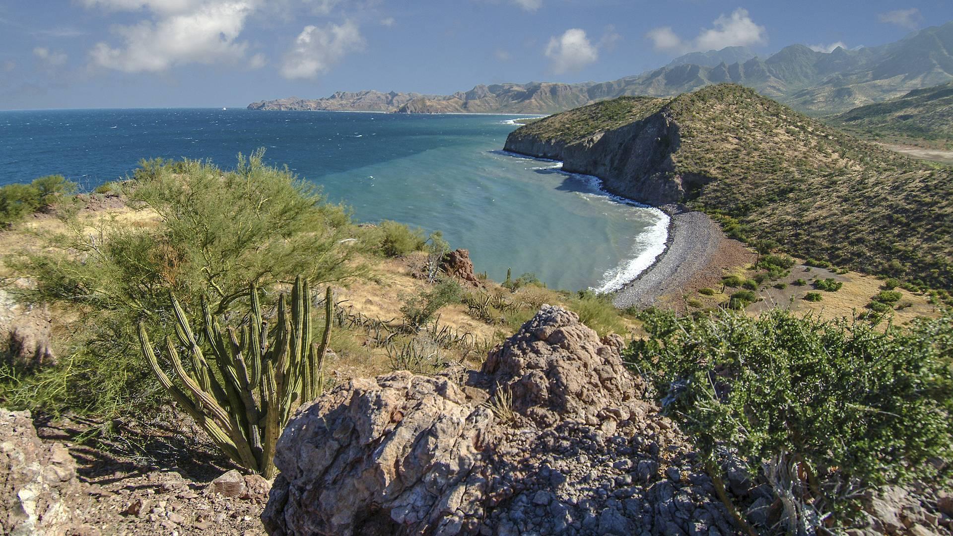 Best of Baja California