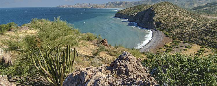 Best of Baja California