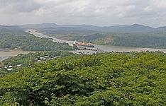 Les forêts tropicales de la zone du Canal de Panama