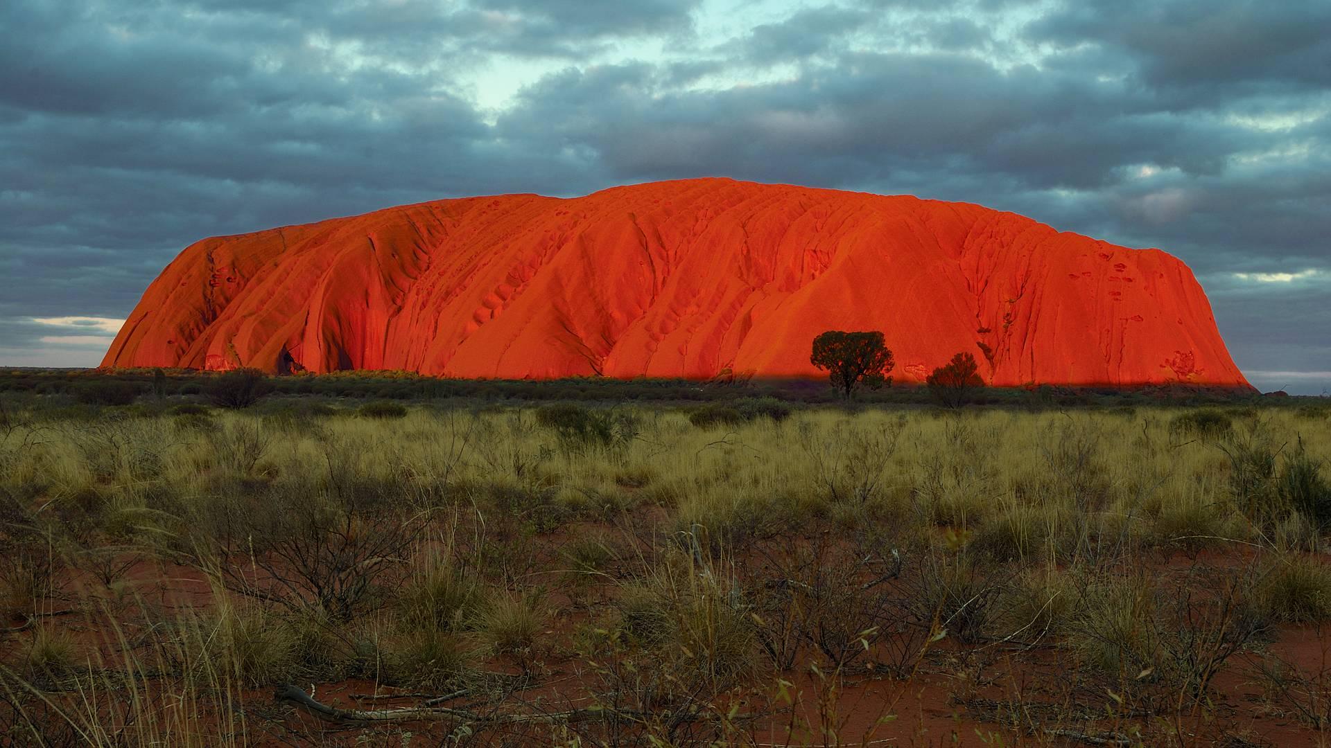 Escapade Australe, Sydney, Centre Rouge et Kangaroo Island
