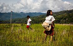 Experience du pays Toraja : Montagnes, rizières et traditions