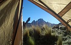 Inoubliables safaris et détente à Tiwi