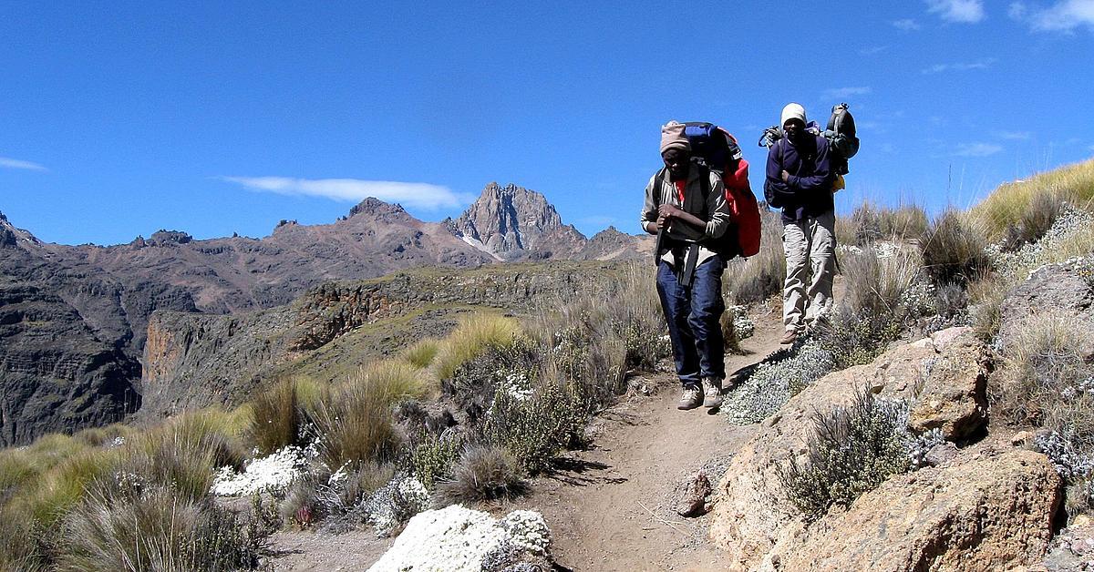 Voyage avec des animaux : Ascension du Mont Kenya et safari à Nakuru