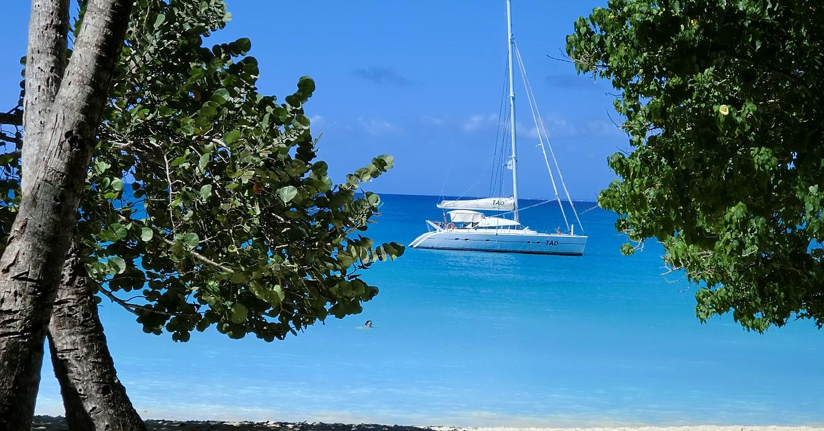 Voyage sur l'eau : Virée croisière en catamaran