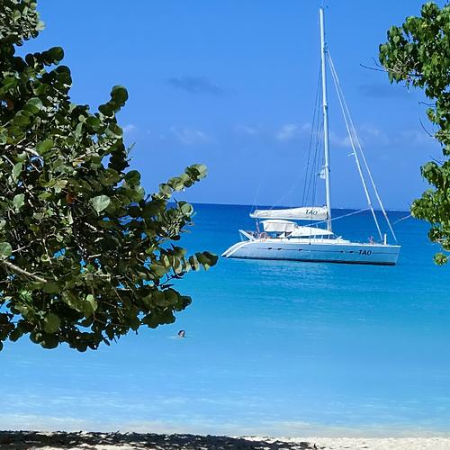Virée croisière en catamaran - Sainte-Anne -