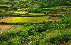 Randonnée et détente dans le Nord de l\'île de Luzon
