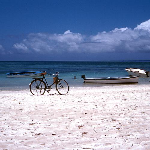 Découverte au coeur de l'île - Île Maurice -