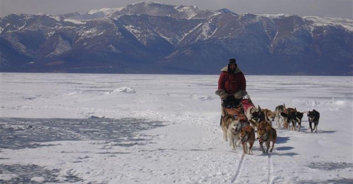Voyage à la neige : Khuvsgul, traversée en traîneau à chiens