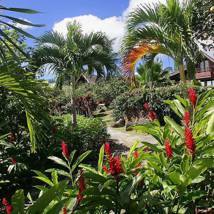 Guadeloupe rundreise idyllischer urlaub zu zweit in den for Jardin 3 rivieres