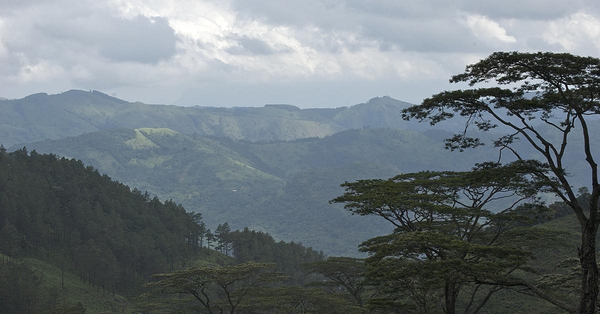 Voyage à pied : Randonnée au coeur du Sri Lanka
