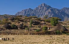 Nord légendaire et montagnes du Simien