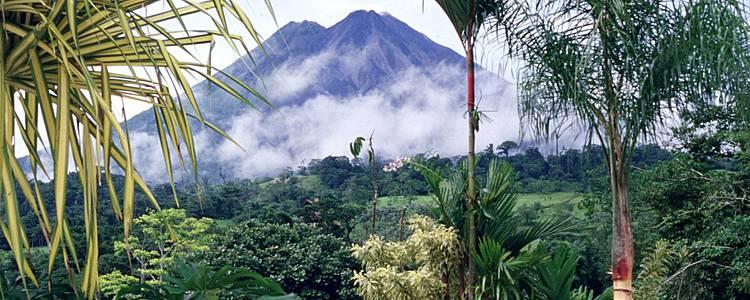 De la jungle aux plages du Pacifique en liberté