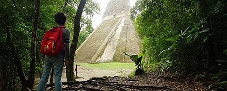 The Mayan Nature Tour
