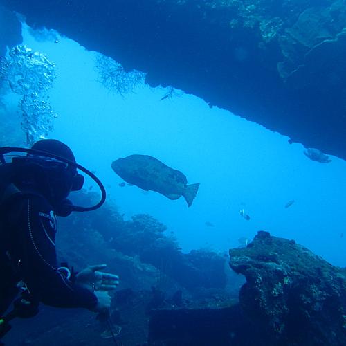 Plongée, tombants, épave et culture balinaise -