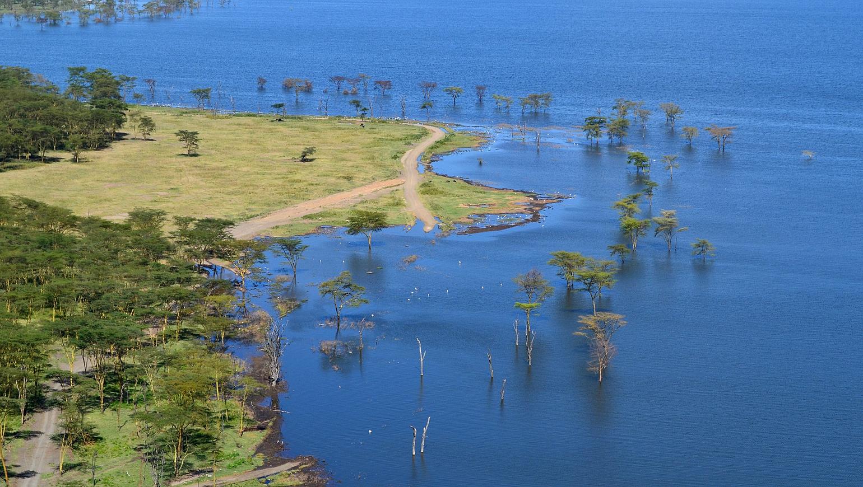 Image Inoubliables safaris et détente à Tiwi