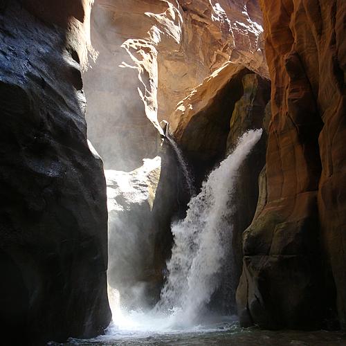 Randonnées des réserves naturelles aux sites millénaires - Amman -