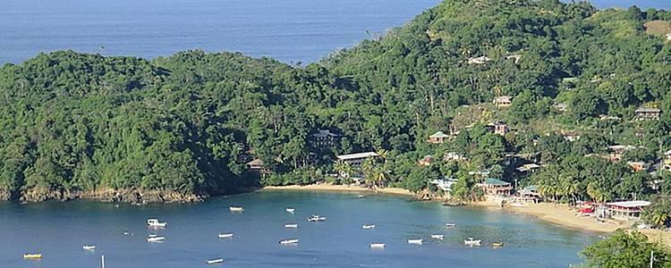 Découverte de Tobago.
