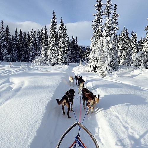 Multiactivités dans le parc national du Jotunheimen -