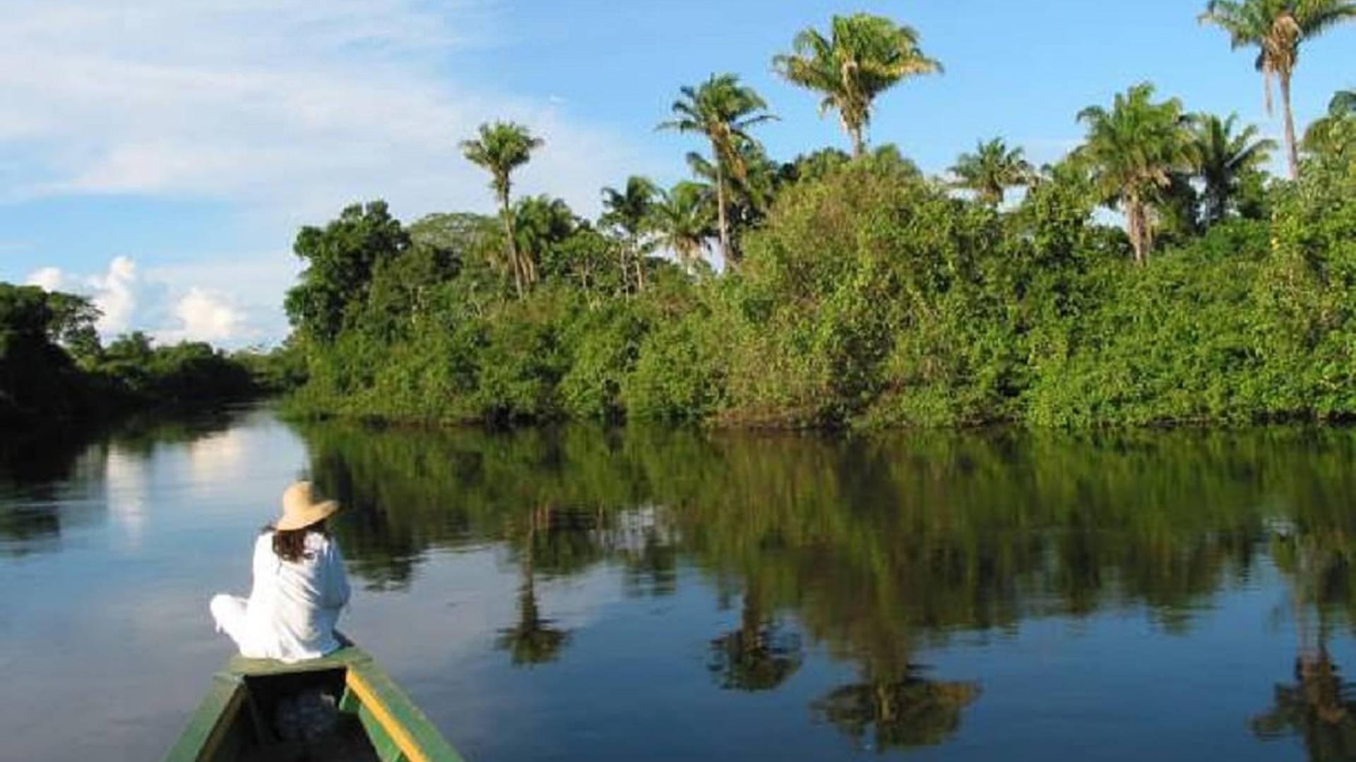 Découverte de l'Amazonie - Forêt et Pampa