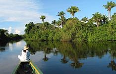 Découverte de l\'Amazonie - Forêt et Pampa