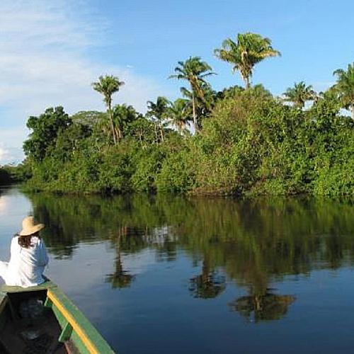 Découverte de l'Amazonie - Forêt et Pampa - Rurrenabaque -