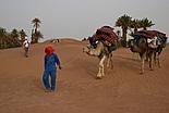 Visiter le Maroc du sud