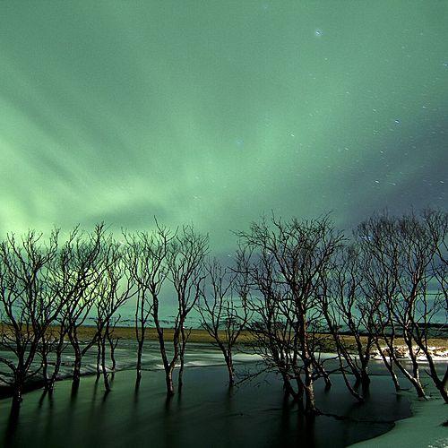 Sud de l'Islande, entre glaciers et océan -